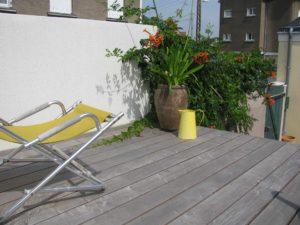 terrasse bois plante